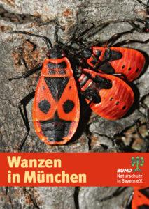 Wanzen in München BUND Naturschutz
