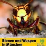 Bienen Wespen München