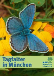 Tagfalter in München BUND Naturschutz