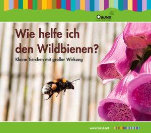 Wie helfe ich den Wildbienen BUND Naturschutz