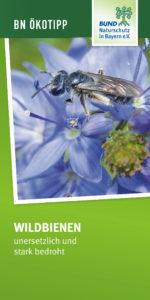 Wildbienen unersetzlich und bedroht BUND Naturschutz
