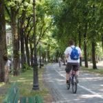 Fahrrad Theresienwiese