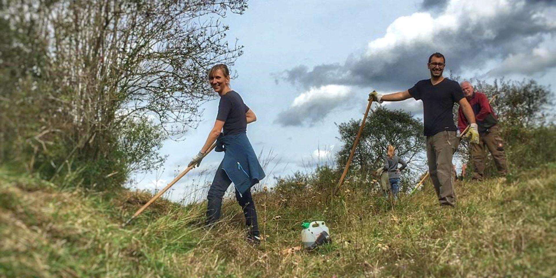 Ein guter Vorsatz: Der Natur aktiv helfen