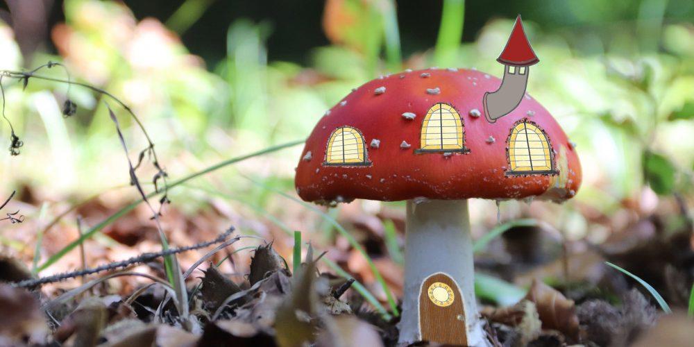 Sendung November 2020: Neue Häuser aus Pilzen – noch ganz dicht?