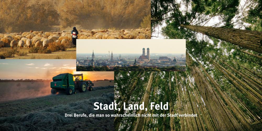 Sendung September 2021: Stadt, Land, Feld